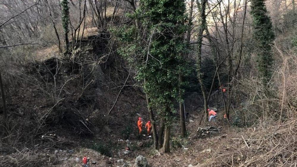 pulizia bosco alpini perledo strada vezio febbraio 2019 (2)-2