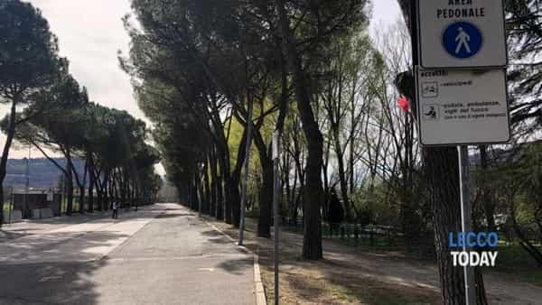 Calolzio intervento carabinieri 16 marzo 2019 bomba (3)-2