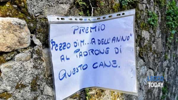 Abbadia San Rocco escrementi 15 04 19 (5)-2-2